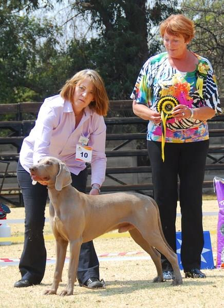 Best Puppy in Show - Rutilus Dear Mr President of Weathervane
