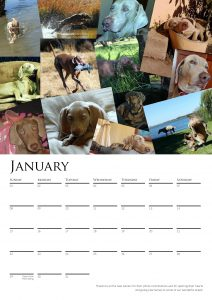 calendar-2017-chosen-a3-copy-added-04octrev2-page-002