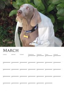 calendar-2017-chosen-a3-copy-added-04octrev2-page-004