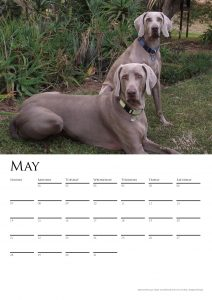 calendar-2017-chosen-a3-copy-added-04octrev2-page-006