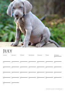 calendar-2017-chosen-a3-copy-added-04octrev2-page-008