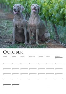 calendar-2017-chosen-a3-copy-added-04octrev2-page-011